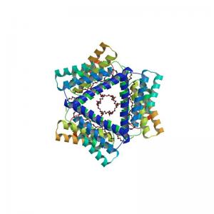 SAA Antibody Monoclonal Anti-Serum Amyloid A