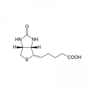 Biotin Antibody (Mouse Monoclonal)