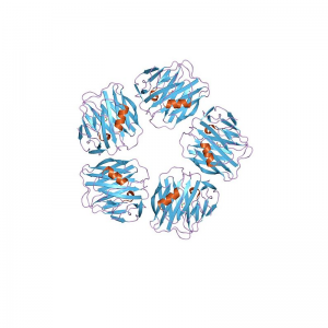 SAA Human Serum Amyloid A1 Recombinant