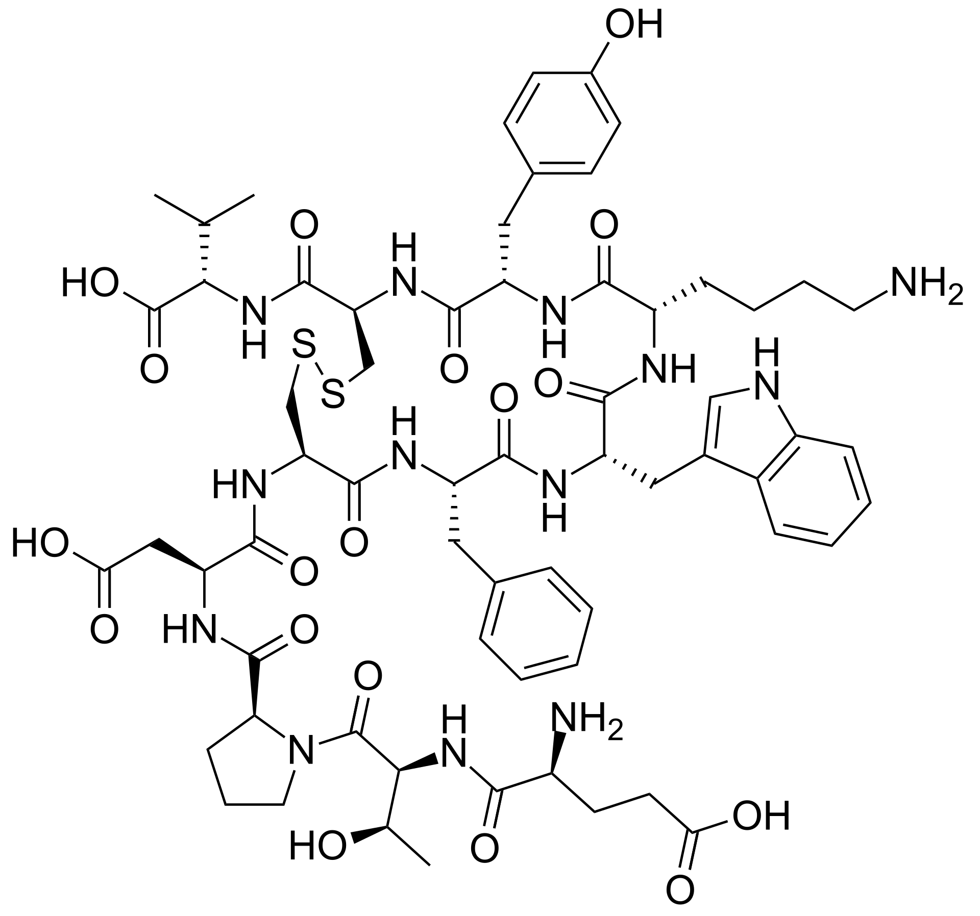 urotensin II human