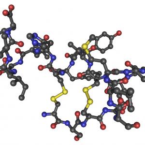 Endothelin-1 (1-31) (Human)