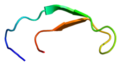 Hepcidin