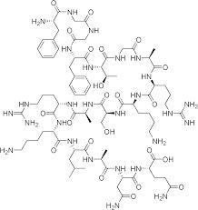 Nocistatin (Human)
