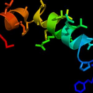 [Ala11, D-Leu15]-Orexin B (Human)
