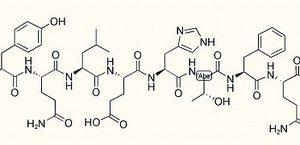 Endokinin D (Human)