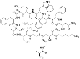Neuronostatin-13 (Human)