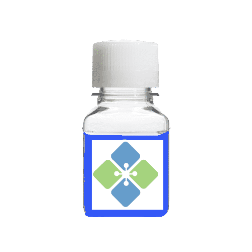 SDS Page Staining Solution
