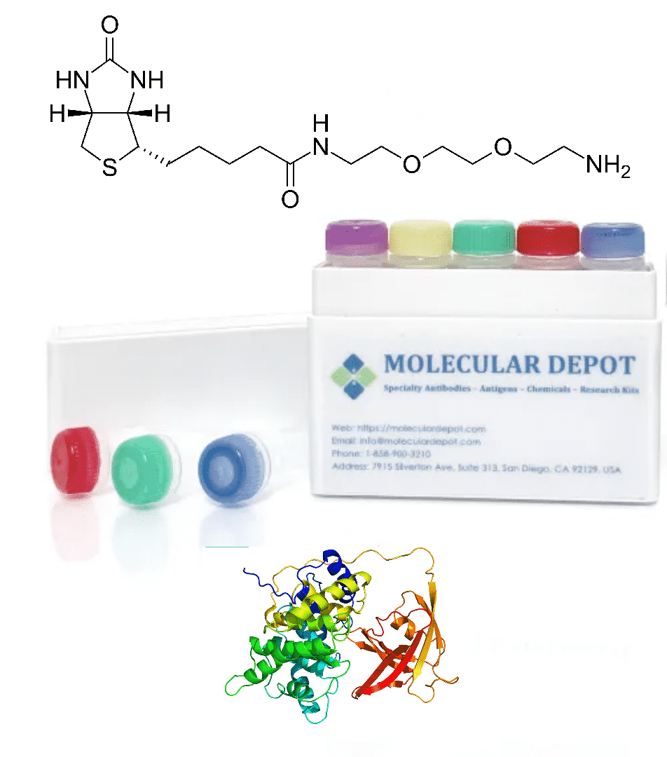 UltraFast Antibody and Protein Biotinylation Kit (microgram scale, 5 reactions)