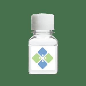 Human 4-1BBR/TNFRSF9 (Recombinant)