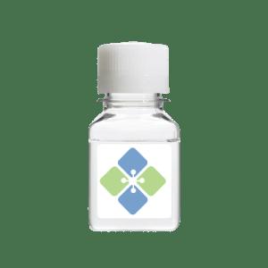 Anti-IgM Latex Particles (High Specificity)