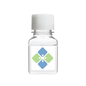 Biotinylated SARS-CoV-2 Spike S1 Domain